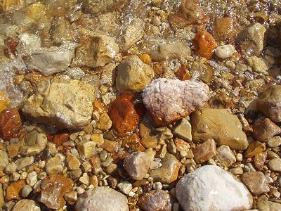 石がゴロゴロしています