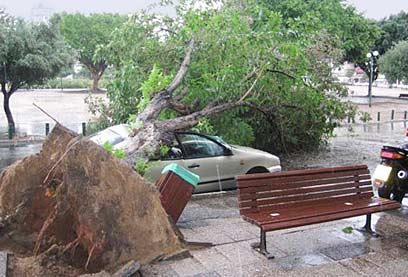 イスラエル全土でこうした被害が続出したらしい